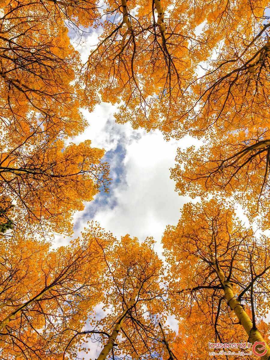 عکس طبیعت پاییزی برای پروفایل